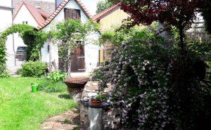 Kräuter-Garten-Villa-Himmelsberg (8)